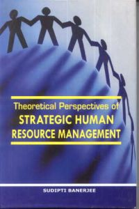 the perspective of the human resource Among the different perspectives of human resource management is the agency or transaction cost perspective, which holds the view that the strong natural inclination of people working in groups is to reduce their performance.