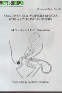 A Review of Bracon Species of India with a Key to Indian Species: Occasional Paper No. 348