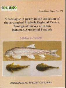 A Catalogue of Pisces in the Collection of the Arunachal Pradesh Regional Centre, Zoological Survey of India, Itanagar, Arunachal Pradesh: Occasional Paper No. 374
