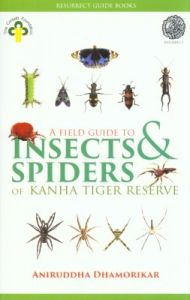A Field Guide to Insects and Spiders of Kanha Tiger Reserve