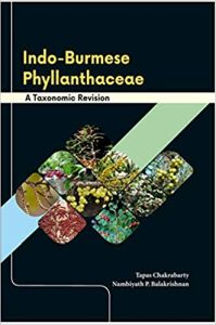 Indo-Burmese Phyllanthaceae: A Taxonomic Revision
