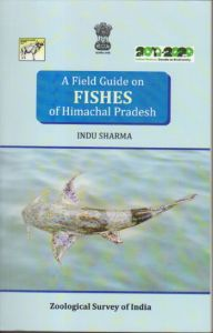 A Field Guide on Fishes of Himachal Pradesh